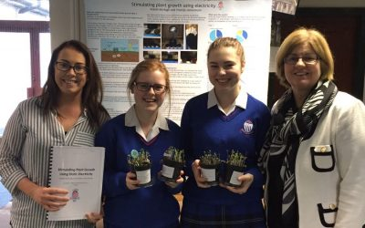 BT Young Scientist Success!