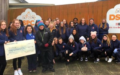 3D Donate to DSPCA